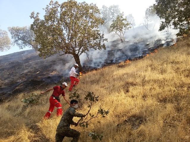 آتش سوزی منطقه دشتگل-اندیکا