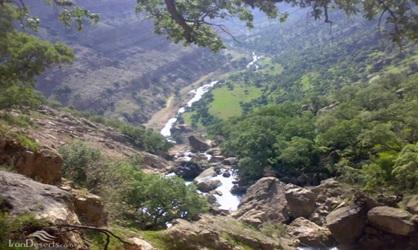 جنگل های بکر منطقه حفاظت شده شیمبار بر سر دوراهی…!؟/ نگذاریم بمیرد جنگل، که جهان خواهد مرد…