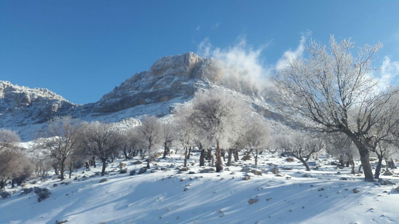 بارش برف محور تاراز در اندیکا را سفید پوش کرد + تصاویر