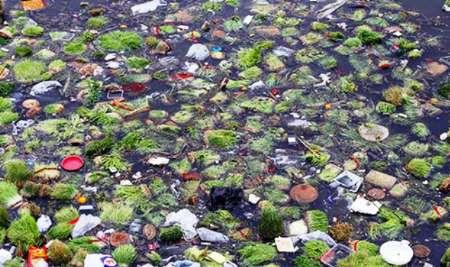 همایش های نوروزی و چالشی به نام آلوده ساختن طبیعت …!؟ + تصاویر