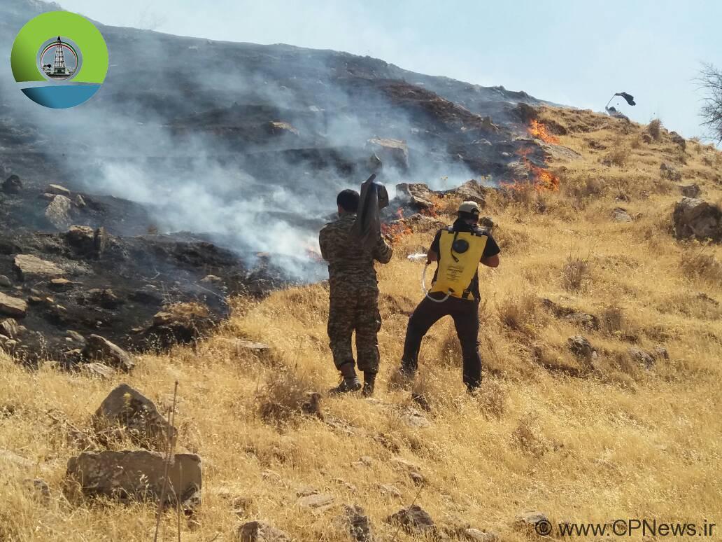 ضرورت توانمندسازی سازمانهای مردم نهاد در راستای مقابله با آتش سوزی جنگل ها و مراتع
