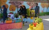 برگزاری نمایشگاه آثار با وسایل بازیافتی در مسجدسلیمان + تصاویر