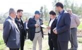 رویکرد شهردار مسجدسلیمان در مواجهه با کمبود سرانه فضای سبز چگونه است؟