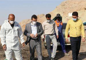 شهردار مسجدسلیمان و چالش مدیریت منابع انسانی در شهرداری