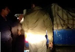 دستگیری عاملان قطع درختان پارک ملی دز