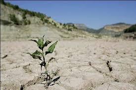 امسال از خشک ترین سال های دوره آماری در کشور است