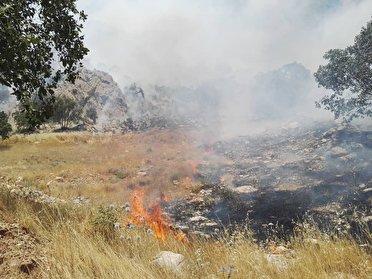 آتش سوزی در جنگلهای بهمئی