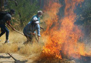 اقدامات موثر در پیشگیری و مهار آتش سوزی ها در مراتع و عرصه های طبیعی