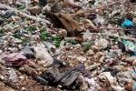 شهر در محاصره زباله، وقتی بودجه میلیاردی پسماند مسجدسلیمان برگشت خورد