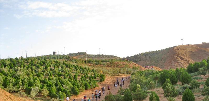 رییس منابع طبیعی مسجدسلیمان: با اقتصادی نمودن طرح های جنگلکاری،مرتعداری و آبخیزداری  تأثیر مثبتی بر اشتغال ، درآمدزایی و کاهش نرخ بیکاری شاهد خواهیم بود